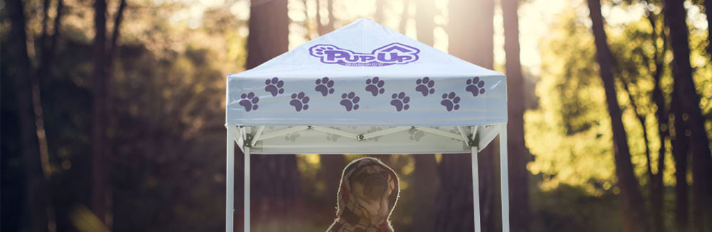 Caravan canopy tent with dog